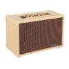 Blackstar Acoustic: Core 30