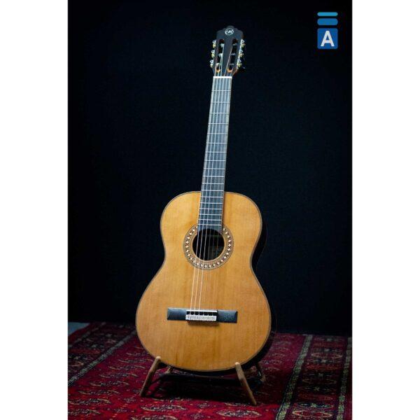 Tanglewood Enredo Madera EM D3 školska gitara sa torbom